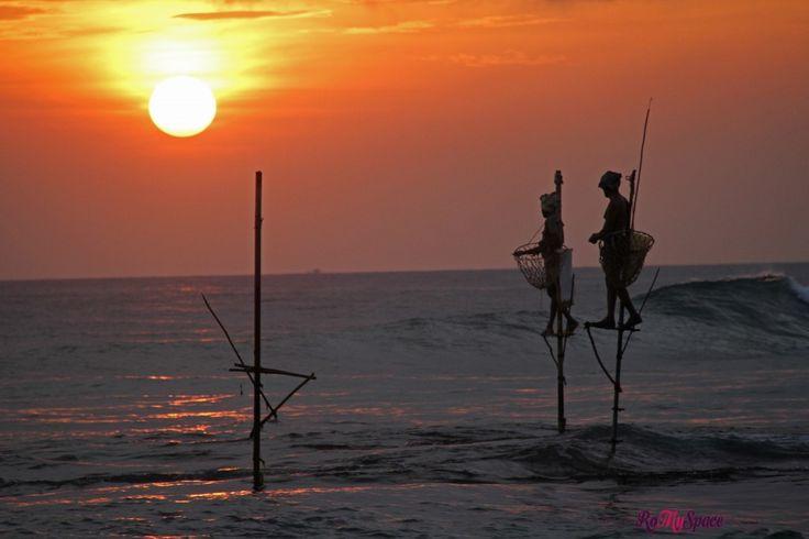 Galle: il forte portoghese e i pescatori trampolieri | www.romyspace.it