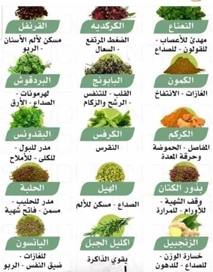 Pin By Bent Almalek On Health Healthy Health Healthy Food Health