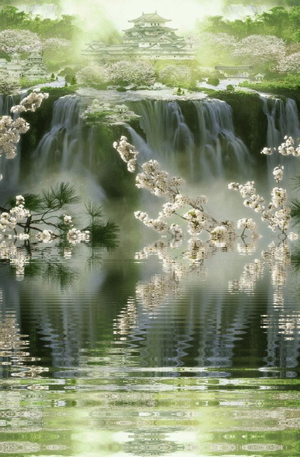 Animated water photos | Galeria de fotos para tu blog o webpage