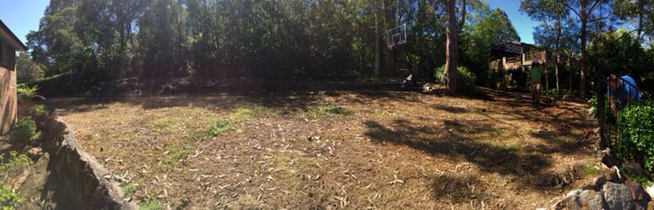 Before new lawn