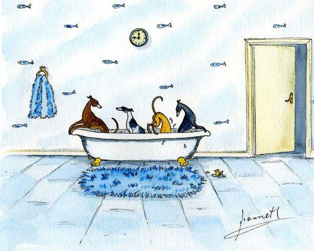 GREYHOUND LURCHER WHIPPET DOG BATH ART PAINTING 6226 Dianne Heap PRINT ART GALGO