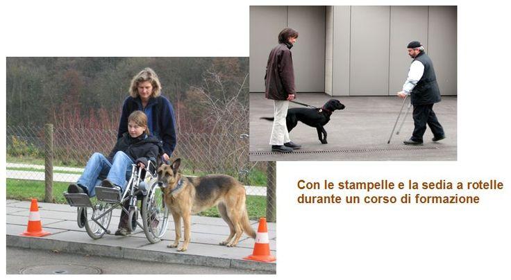 Scuola DELTA per formazioni per cani da terapia, Ticino