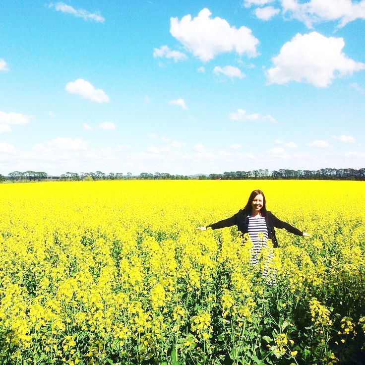 The day I saw canola fields for the very first time. Couldn't wipe the smile off my face  Melbourne, Australia