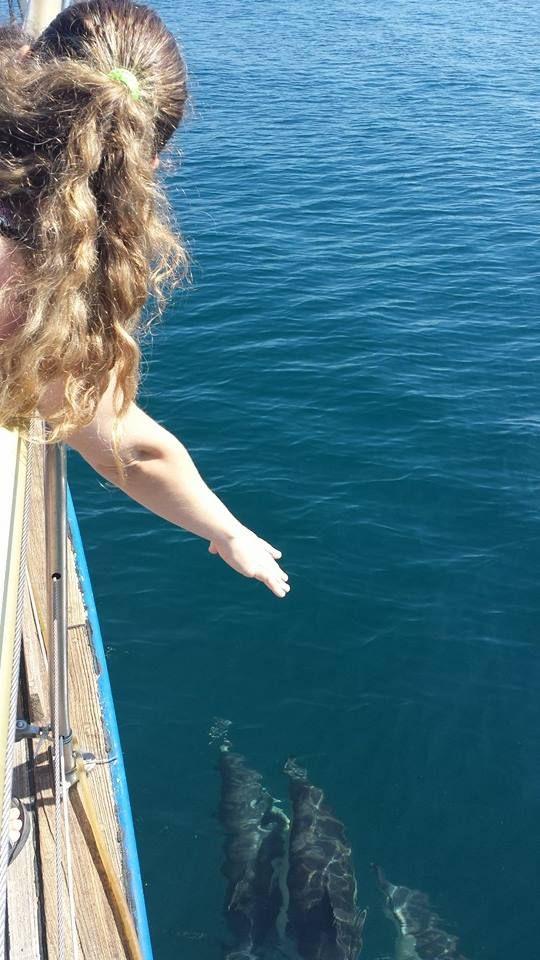 Paseo en barco Velero en Estepona
