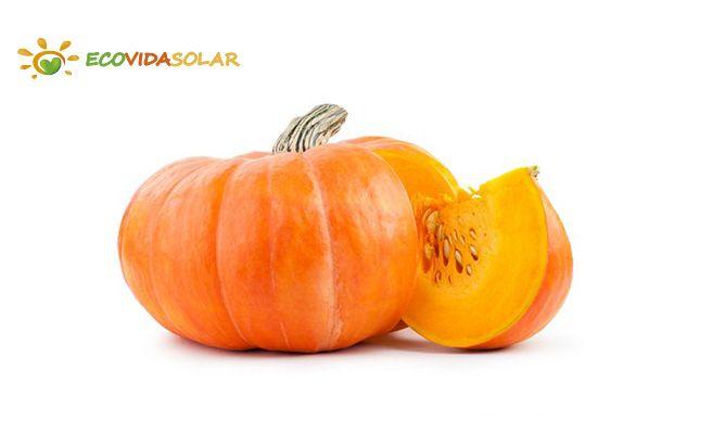 Calabaza (Cucurbita sp.) - Propiedades de la Calabaza