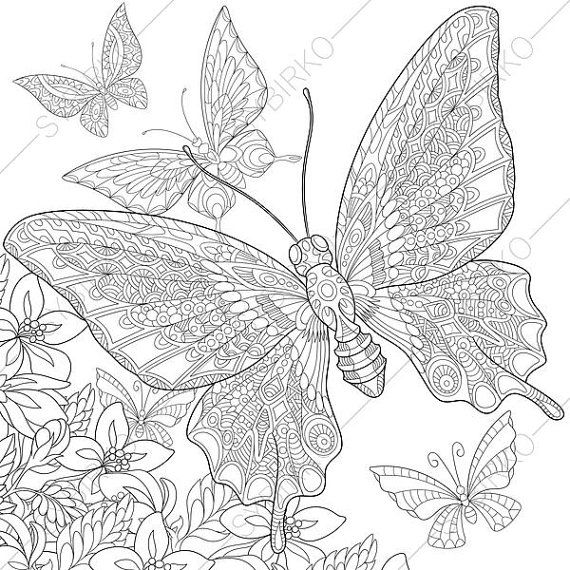 1430 best ➕Doodles and colouring pages➕ images on Pinterest - copy coloring pages flowers and butterflies
