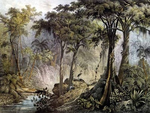 Pintura de Johann Moritz Rugendas