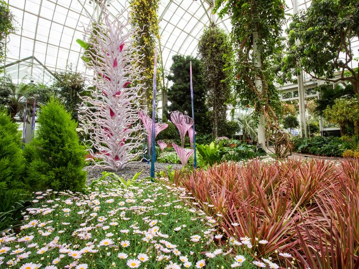 21 Best Chihuly Nybg Images On Pinterest Dale Chihuly Botanical Gardens And Glass Art