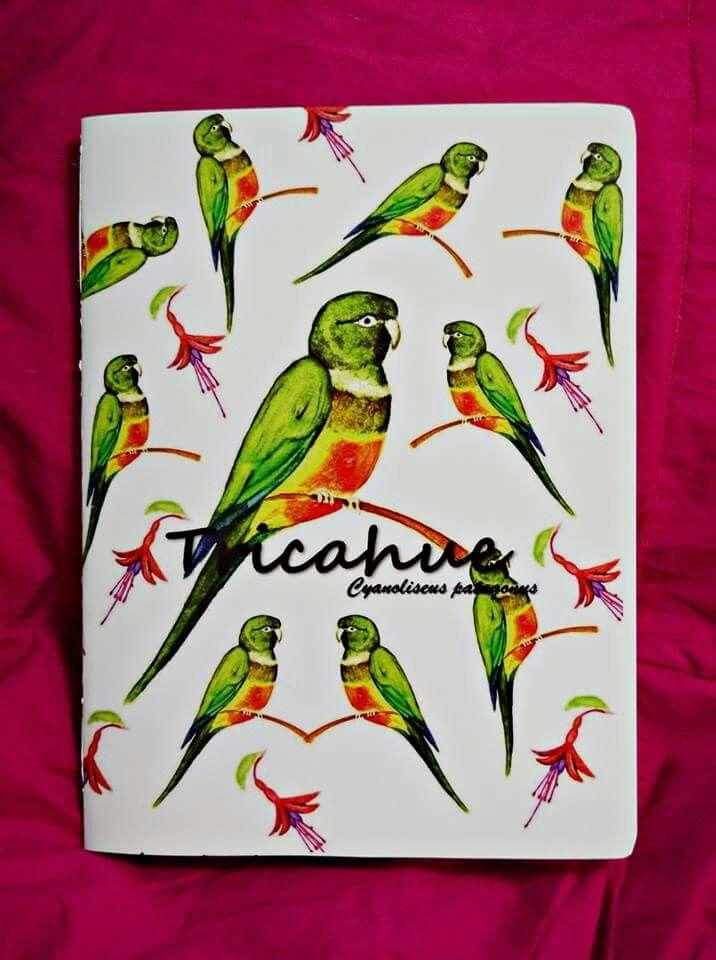 Libreta Loro Tricahue #animals #art #design