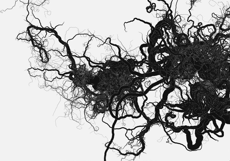 recursion-toy-veins.jpg (1280×900)
