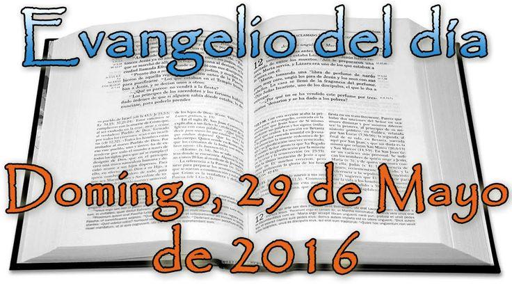 Evangelio del día (Domingo, 29 de Mayo de 2016) - YouTube
