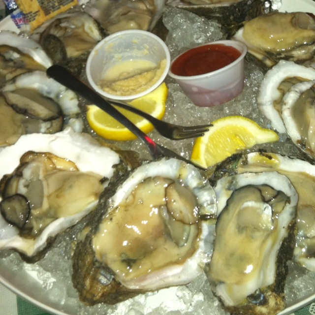 Oysters on the half shell   Random Thoughts   Pinterest