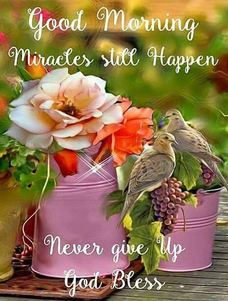 Pin by carmel on quotes pinterest morning greetings quotes pin by carmel on quotes pinterest morning greetings quotes email cards and weekday quotes m4hsunfo