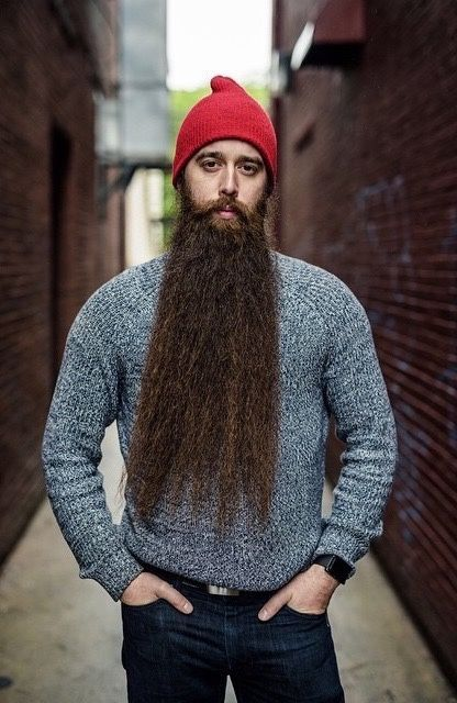 25 best ideas about long beards on pinterest bearded men hair beard styles and beards. Black Bedroom Furniture Sets. Home Design Ideas