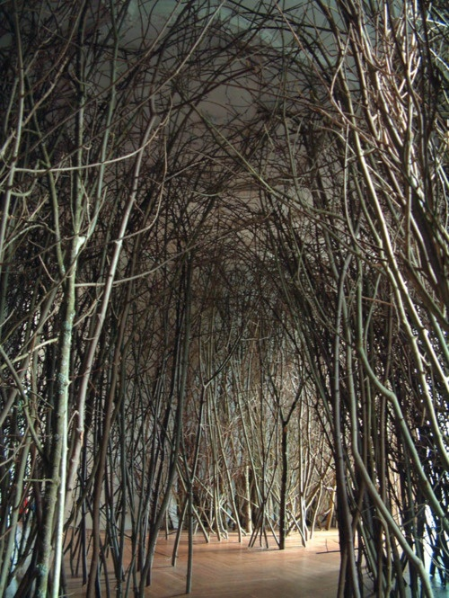 devidsketchbook:    Olafur Eliasson 'The Forked Forest Path' at the Whitworth Art Gallery