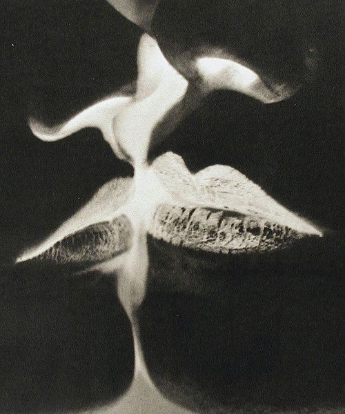 Kiss, Rayogram, Man Ray