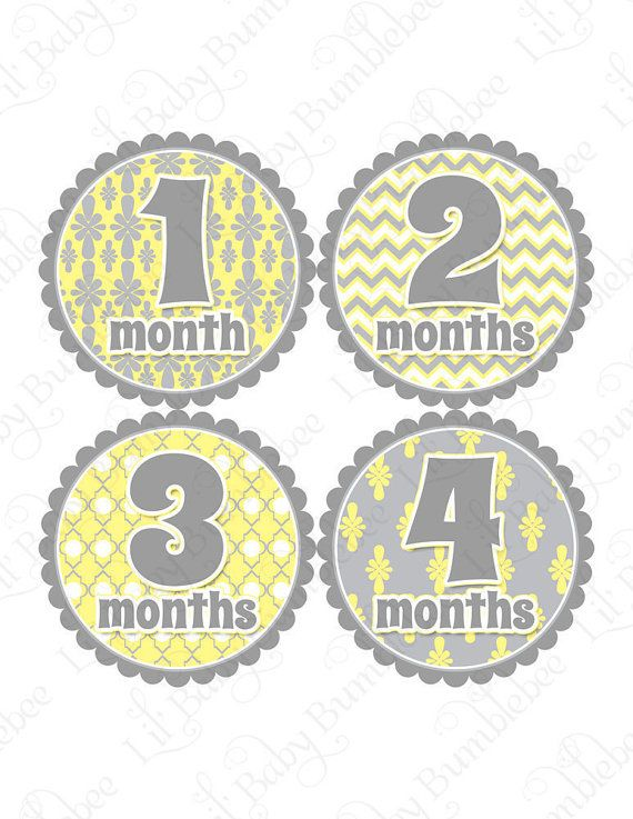 Monthly Onesie Stickers for Girls  Karina  by LittleBabyBumblebee, $9.00