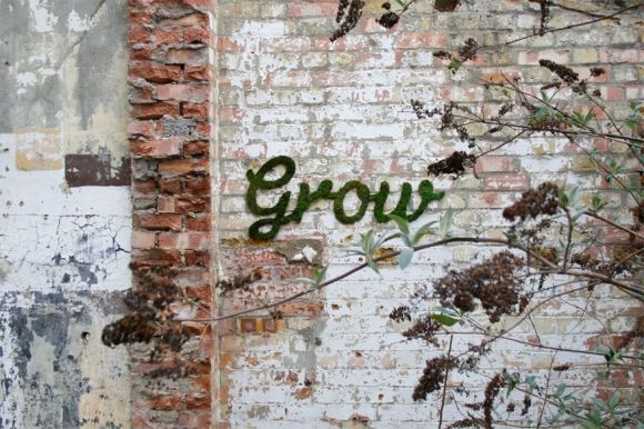 Phenomenal Moss Graffiti Art by Anna Garforth