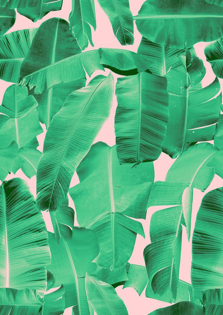 pattern | banana leaf print by rhianna ellington