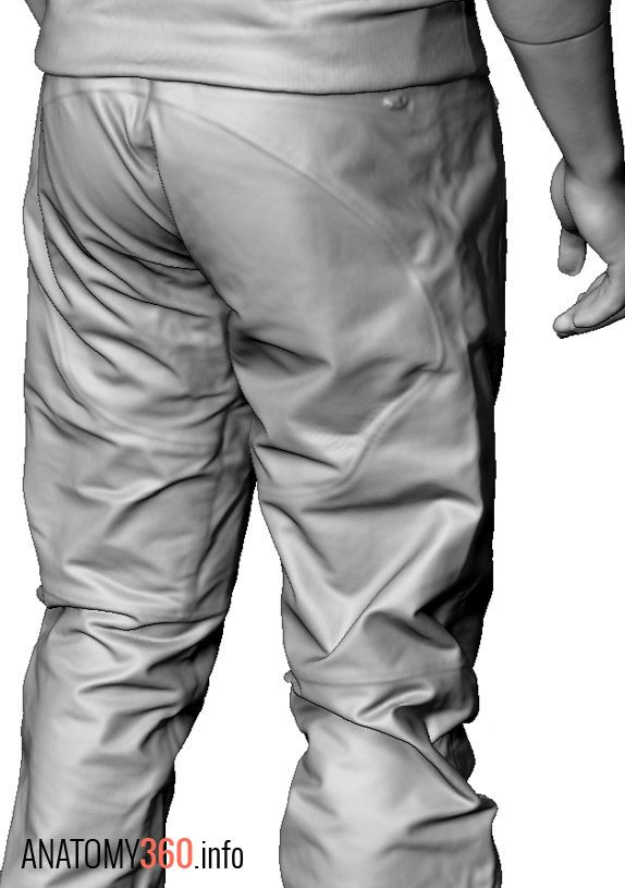 Male02_Walking_Arms_Down_CU01