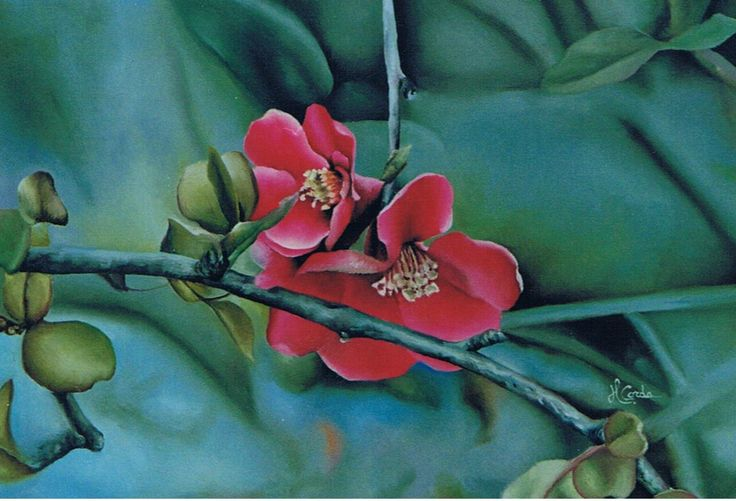Nature, Peach flowers, Oil Painting, 35x50 cm 2003