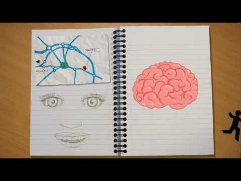 If you have students who are interested in learning about the brain, they might enjoy watching and discussing The Learning Brain...