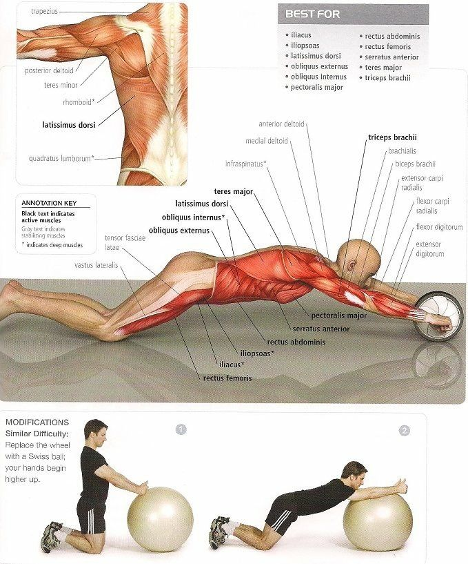abdominales con rueda