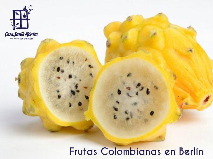Las 10 frutas colombianas que ahora se podrían consumir en Alemania http://bit.ly/1mi0Y9L