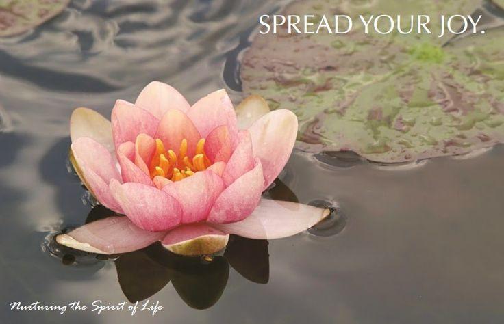 Juniper Village at Brookline Wellspring Memory Care: Spread Your Joy: September Events