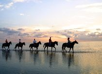 South Padre Island, Texas. Sunset horse ride on the beach. Beautiful.