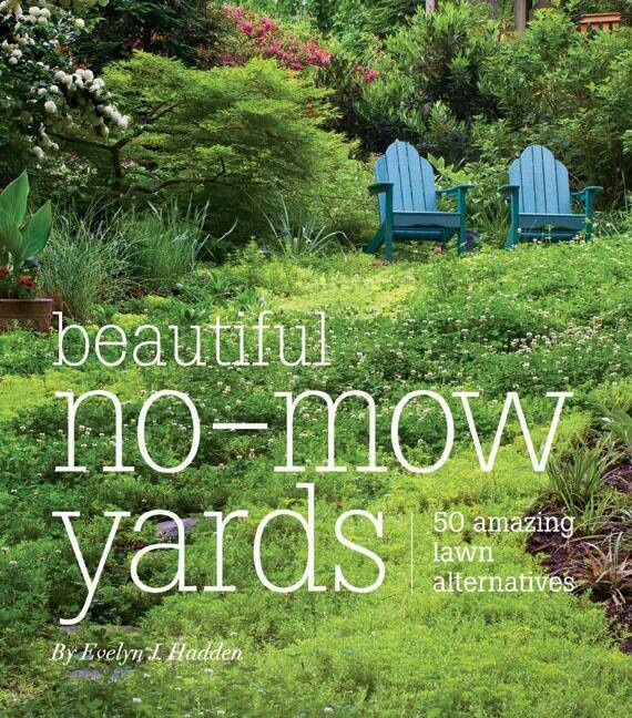 No - Mow Yards lovely | garden ideas | Pinterest on No Mow Backyard Ideas id=76767