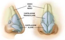 Intervento di rinoplastica per modellare il naso