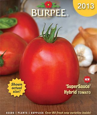 garden seed catalogs. Burpee Gardening Seed Catalog - Anyone Else Ready For Spring? Garden Catalogs