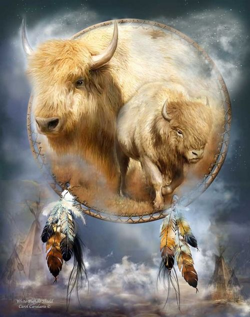 White Buffalo  Symbol of peace and harmony  A divine messenger asking us to define  The meaning and purpose of our life  Sacred spirit of abundance  If a White Buffalo appears in our life  It is a sign our prayers have been answered  And all that we desire will be given  But only if we honor and respect all the offerings of Mother Nature  And are grateful for the gifts we have already received.    Prose by Carol Cavalaris ©