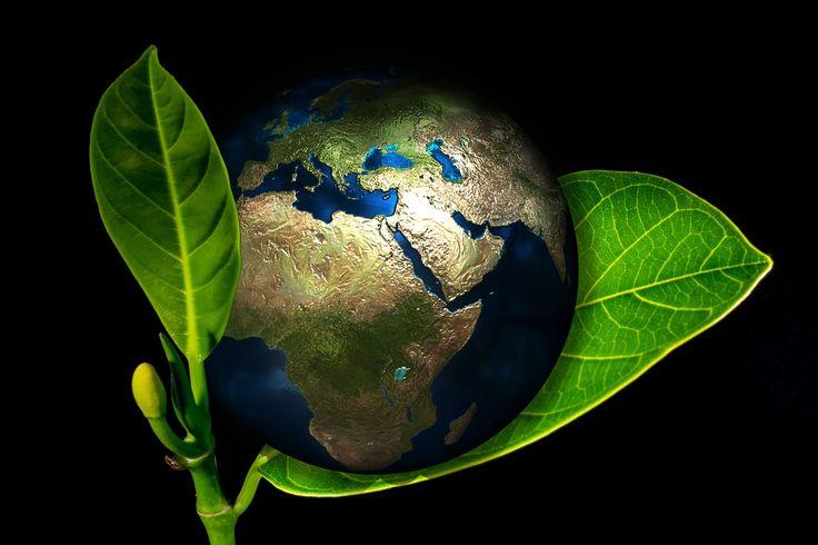 Sii il cambiamento che vuoi vedere nel mondo MahatmaGandhi  #GiornatadellaTerra http://www.mercatinousato.com  #MercatinoUsato