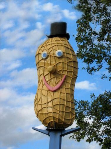 The Big Peanut, Cairns, QLD, Australia.