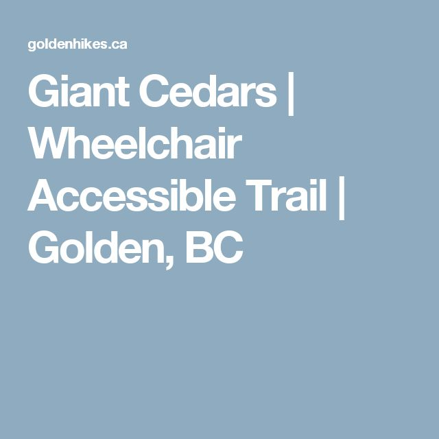 Fancy Giant Cedars Wheelchair Accessible Trail Golden BC