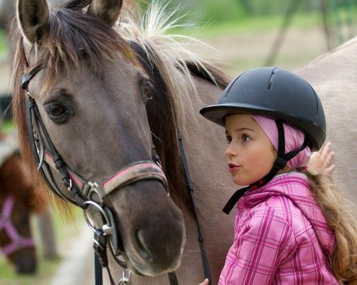 Introduction to Pony Racing   Pets4Homes