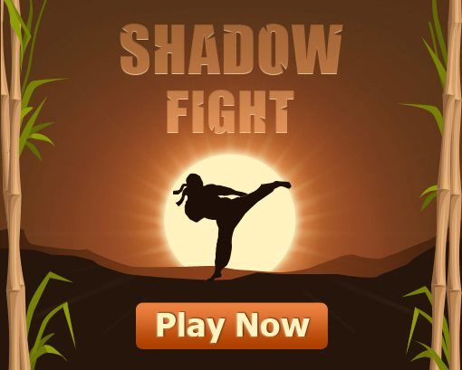 Shadow Fight : Facebook Game App | My Blog Times