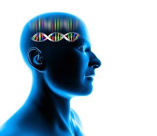 "My Health Gains : ""DNA Diets"" : Junk Science?   My Health Gains"
