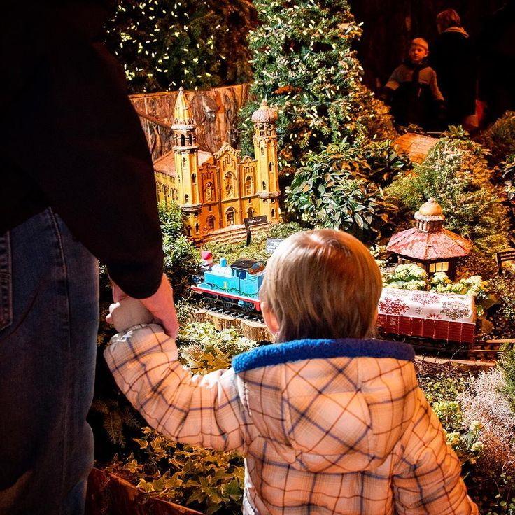 Tickets for Wonderland Express, our indoor holiday