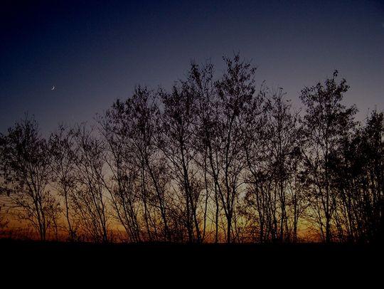 Napfelkelte   Képek / rajzok