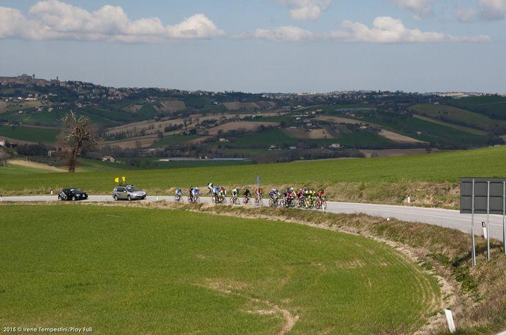 E' andata in archivio la prima edizione della #Granfondo Città di #Ancona - #Kemo. La manifestazione, erede della Granfondo del #Conero, ha richiamato oltre 900 ciclisti.  Ecco classifiche e foto della gara  http://www.mondociclismo.com/gf-citta-di-ancona---kemo-festa-per-900-ciclisti-foto-e-classifiche20150308.htm  #ciclismo #MarcheMarathon #mondociclismo