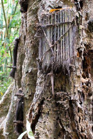 Tana Toraja: Kambira's Baby Graves