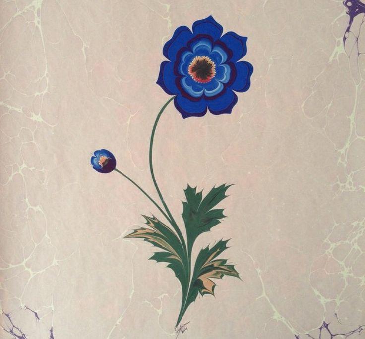 Anemon çiçeği  ebru Firdevs Çalkanoğlu