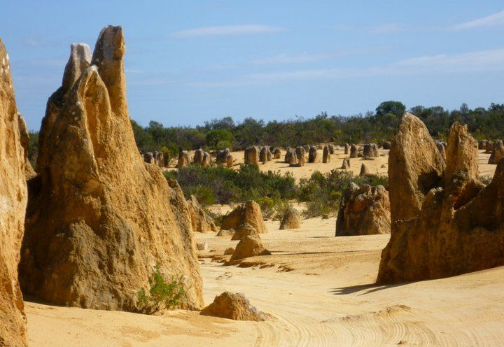 First stop today is the impressive Pinnacles Desert in Nambung National Park. We enjoy a fully guided tour through these amazing limestone formations and drop in at the Discovery Centre, before we have lunch by the sea. After a sightseeing stop in the town of Geraldton it's on to Big River Ranch in Kalbarri National Park for some true blue Aussie hospitality and our overnight stay.