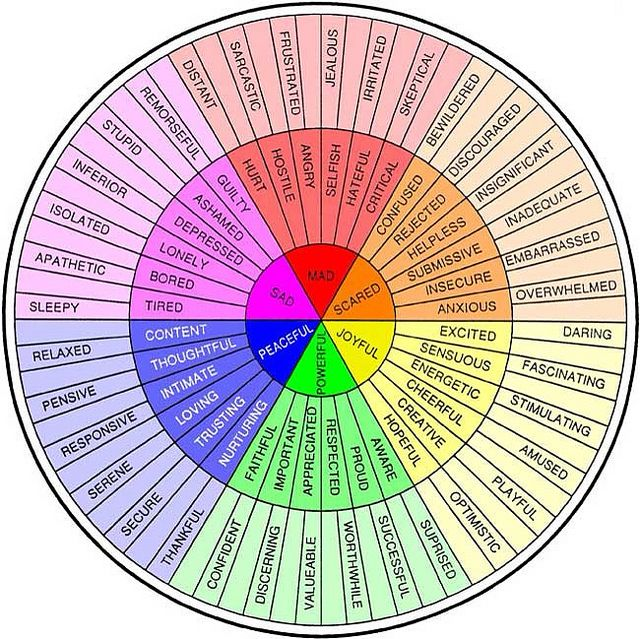 Feeling Wheel. One emotion is the chain reaction to others. Recognize the outer stages, before they hit their terminus.