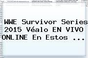 tecnoautos.com/ Wwe En Vivo. WWE Survivor Series 2015 véalo EN VIVO ONLINE e