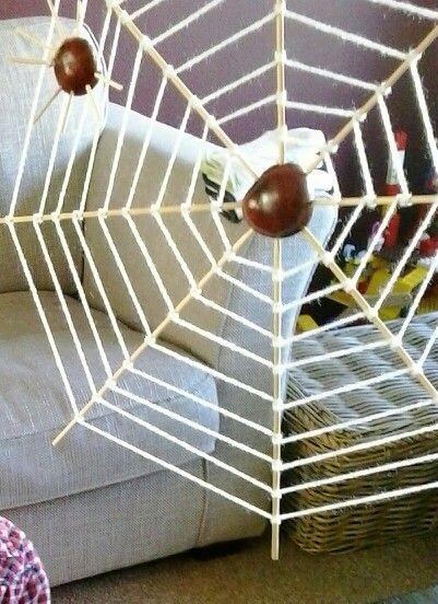 Kastanje spinneweb