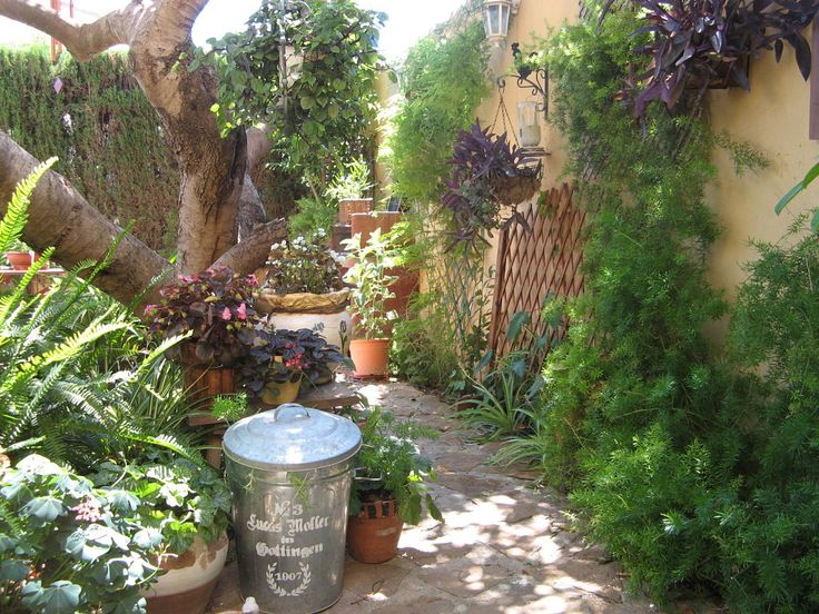 17 best images about paisagismo on pinterest gardens for Como decorar el patio de mi casa